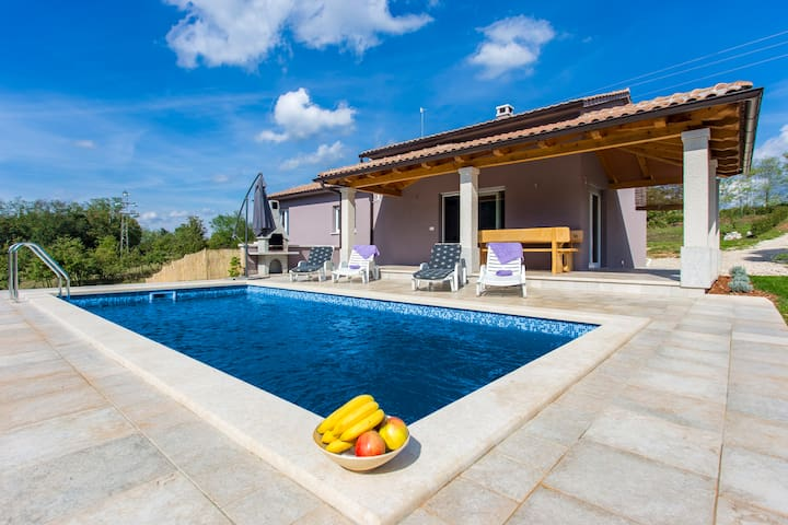 Modern House with private pool - Križanci - Ev