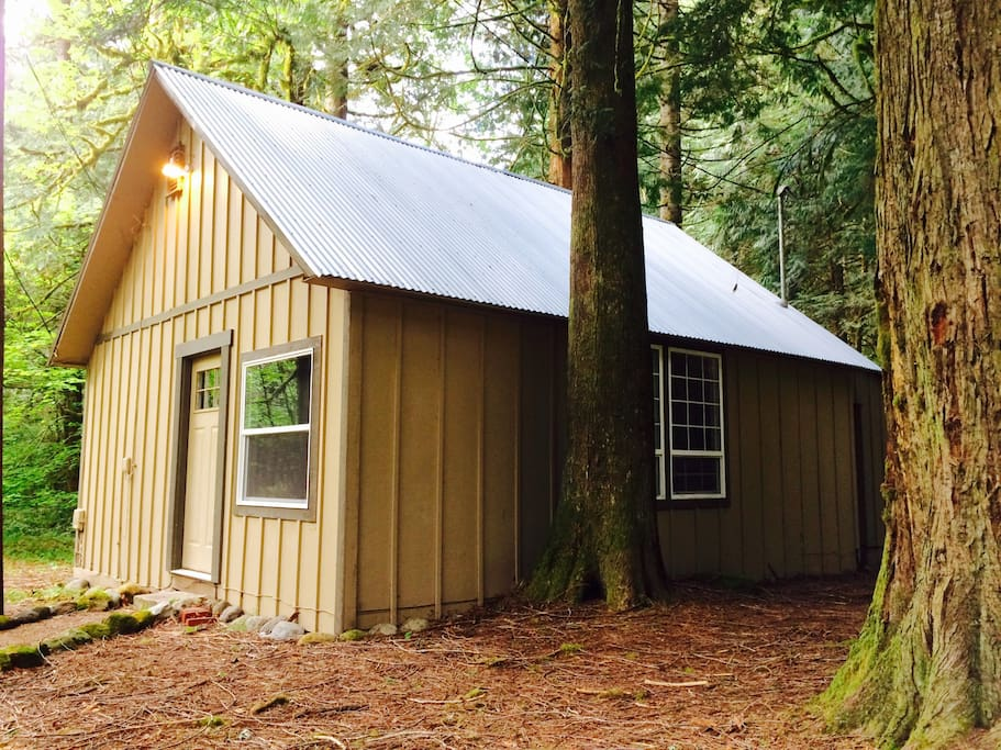 Tin roof cabin in the woods cabins for rent in for Cabin in the woods oregon