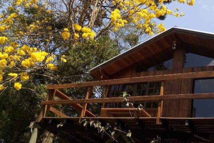 Sitio do Ipê Amarelo