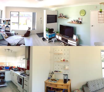 Mocha's House - Auckland - Casa