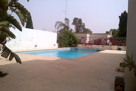 Large room in Garden flat with pool - San Gwann - Flat