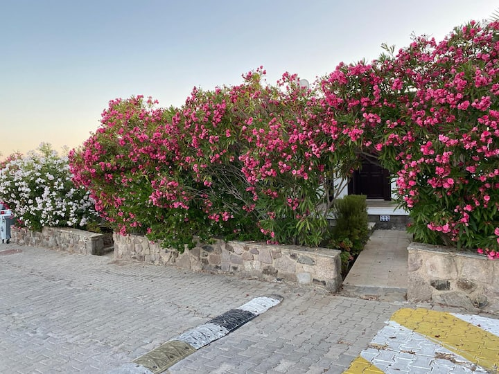 Bodrum Aktur'da deniz manzaralı şık, bakımlı villa