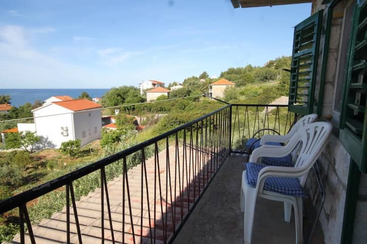 Two bedroom apartment with terrace and sea view Zavala, Hvar (A-8802-b)
