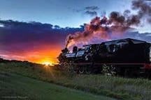 Bellarine Railway has steam train rides most days.  Also the Blues Train Friday and Saturday nights.  Although bookings are essential.