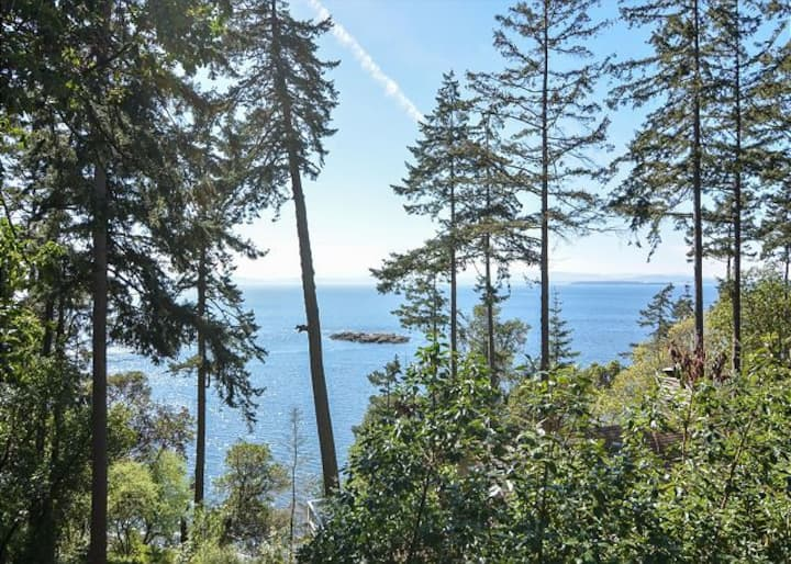 San Juan Island, Orca Overlook #112