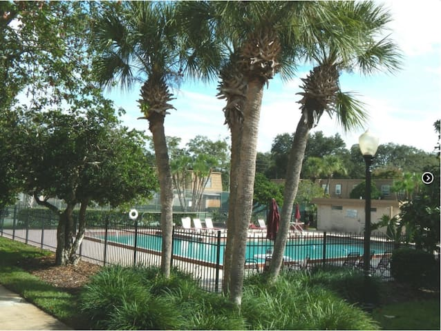 2 Br Over A Pool In Beautiful Winter Park Florida Condominiums For Rent In Winter Park
