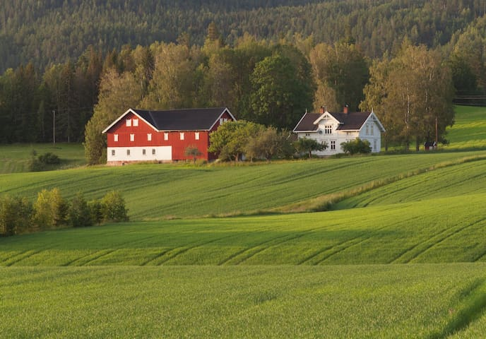 Telemark Guesthouse with wood fired pizza oven