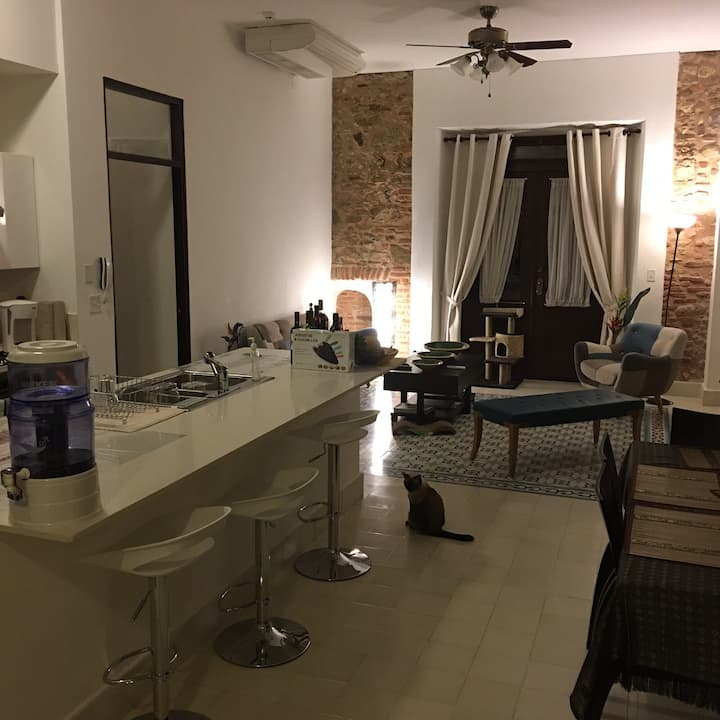 Luxury apartment in the heart of Casco Antiguo
