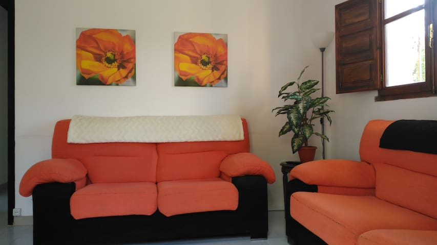 Living room - photo taken from entrance door and inwards