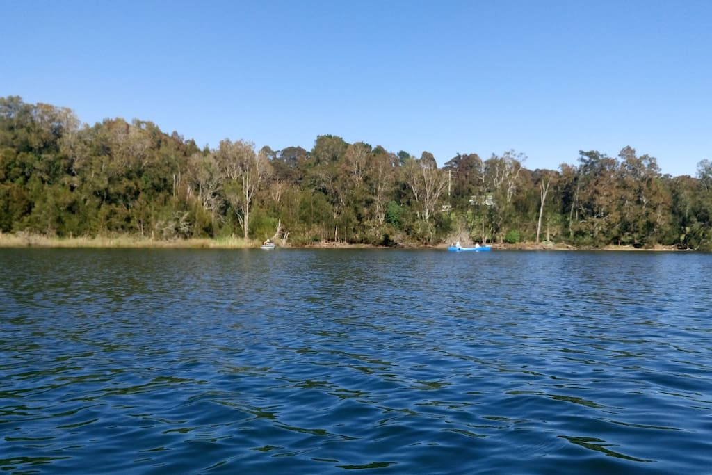 We are a 5 min walk from Lake Mummuga, a coastal lagoon. A great place to explore with a kayak or canoe.