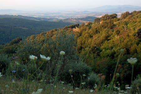 Salvia: collina vista mare giardino - Tatti - บ้าน