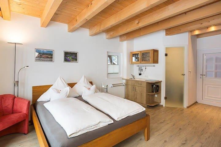 Blick auf die Betten, kleine Küche mit Kochplatte, Bad - Tür zum Vorraum