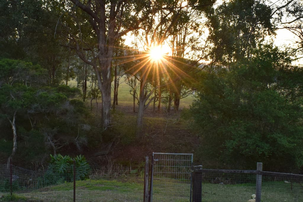 Breath in the peace of Mother Nature with sunset viewed from the back veranda of Judith, a delightful cottage in Bellbird Heights