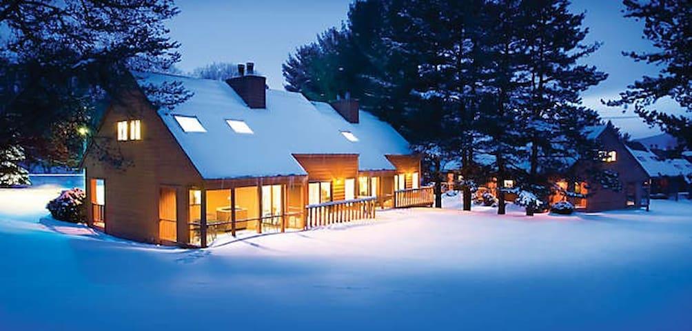 2bdr 2 ba Villa Wisconsin Dells