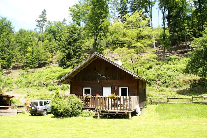 Wooden holiday home in the forest, ideal for walking and wildlife watching