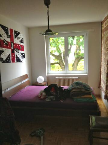 DoubleRoom 20mins walk toBasel-City - Birsfelden - Bed & Breakfast