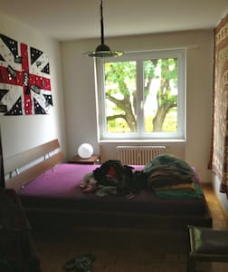DoubleRoom 20mins walk toBasel-City - Birsfelden