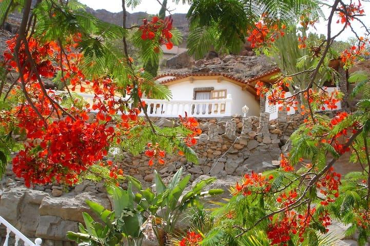 Finca la Palma - Pflanzenoase mit Meerblick