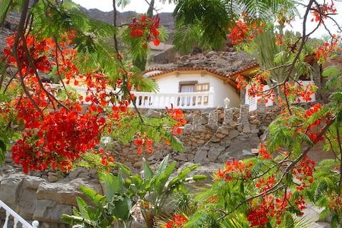 Finca la Palma - Oáza rostlin s výhledem na moře