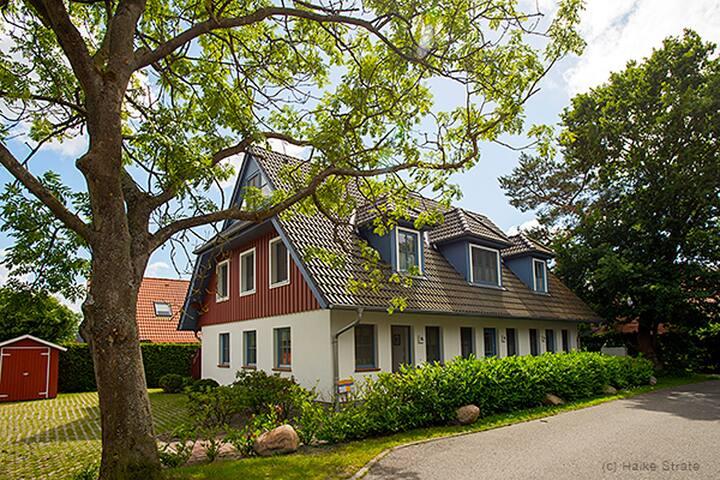 Ferienhaus für 6 Gäste mit 72m² in Zingst (21783)