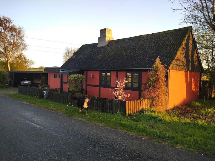 Rødt hus, grøn have, blå himmel = ro og råhygge!