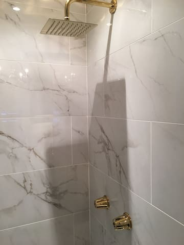 Marble and Gold rain shower with Bluetooth!