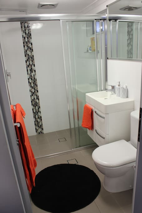 The bright ensuite with shower.