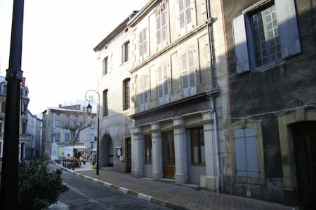 Spacious French merchant house in Quillan - Quillan