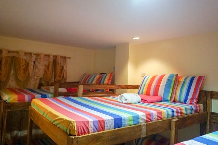 Big Bunk Bed in a shared room, dorm style 302-5