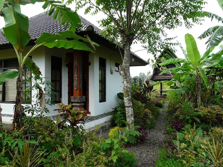 Banana Garden - discover traditional Bali