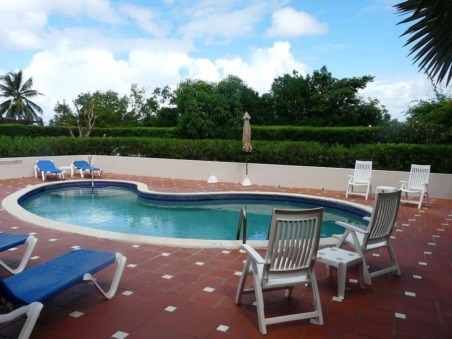 main guest pool