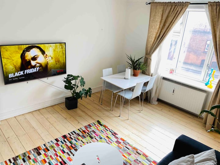 Newly renovated cozy apartment in cph center