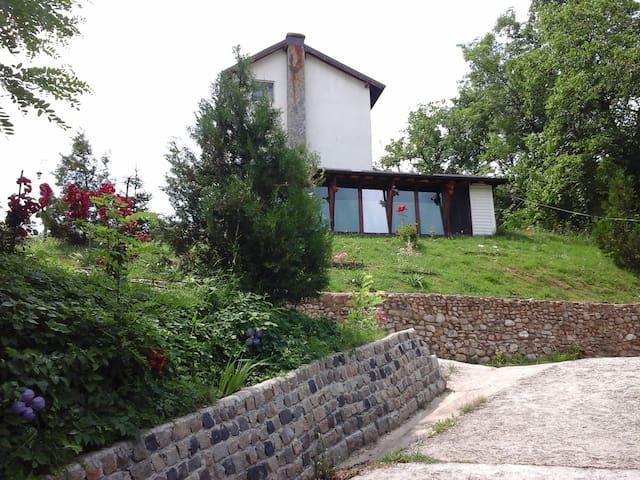 Casa Piscul Lupului