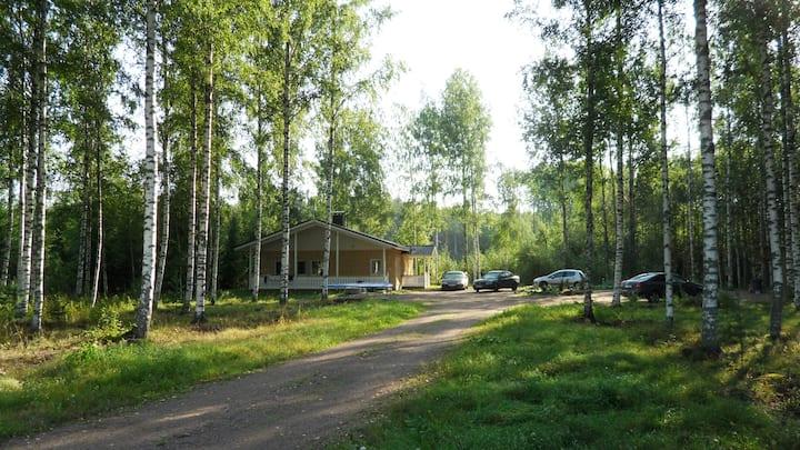 Foxy burrow/Kettu reikä/Лисья нора