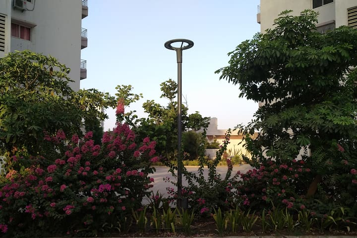 Entire 2 BHK 1st Floor Apartment Family or Friends