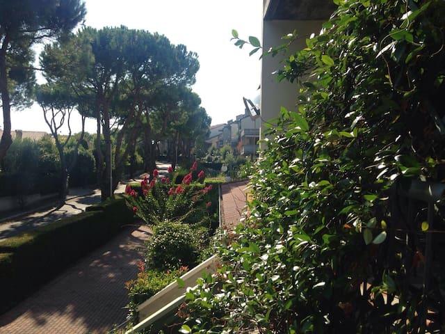 Grazioso appartamento sul  lago - Desenzano del Garda - Apartment