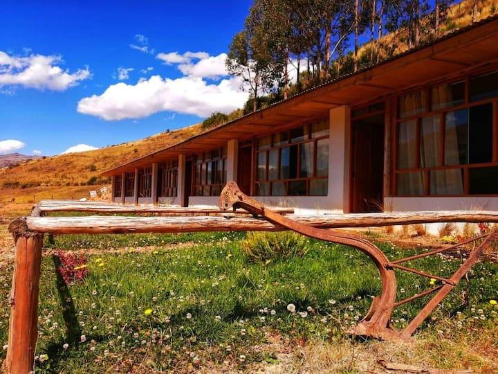 Pamuri Camp