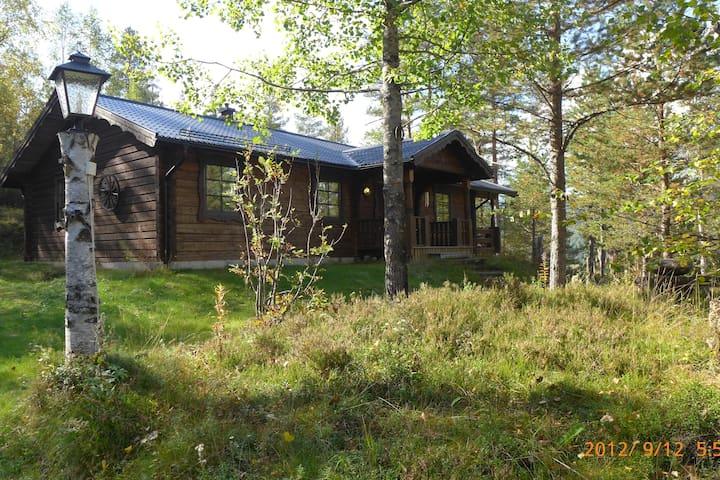 Classic cabin in a scenic area