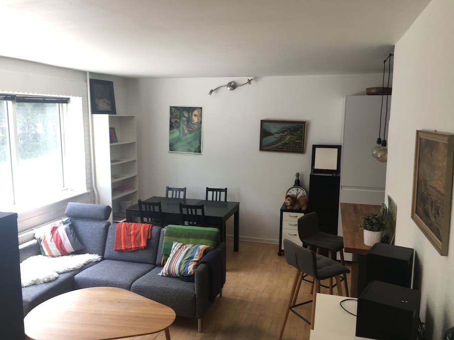 Space efficient apartment with new couch