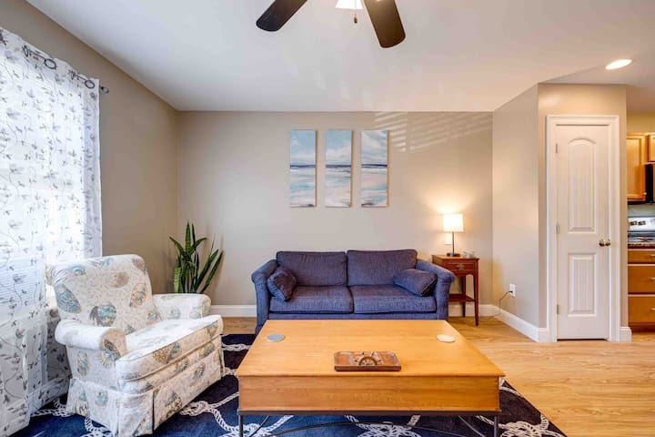 Living room couch pulls out into a full sized mattress, seashell chair is a swivel/rocking chair.