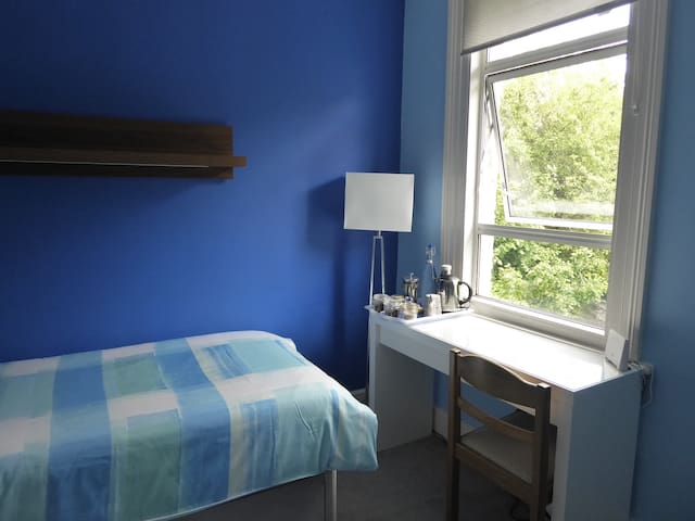 Blue Room in a Beautiful Edwardian house