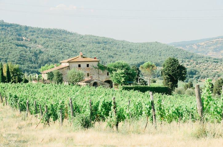 Family Suite in an Organic Farmhouse in Chianti