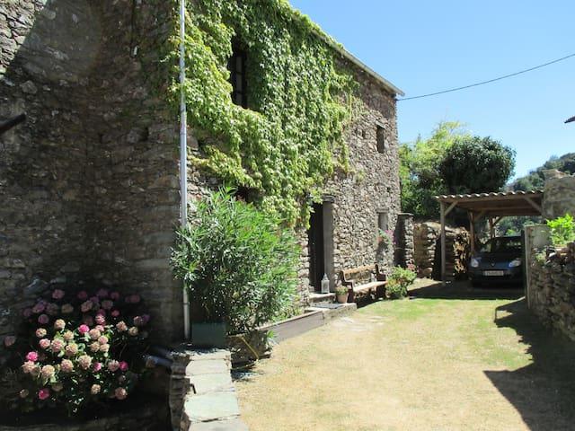 Ferienwohnung Sole e Ventu 50 qm - San-Giovanni-di-Moriani - Leilighet