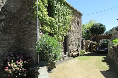 Ferienwohnung Sole e Ventu 50 qm - San-Giovanni-di-Moriani - Pis