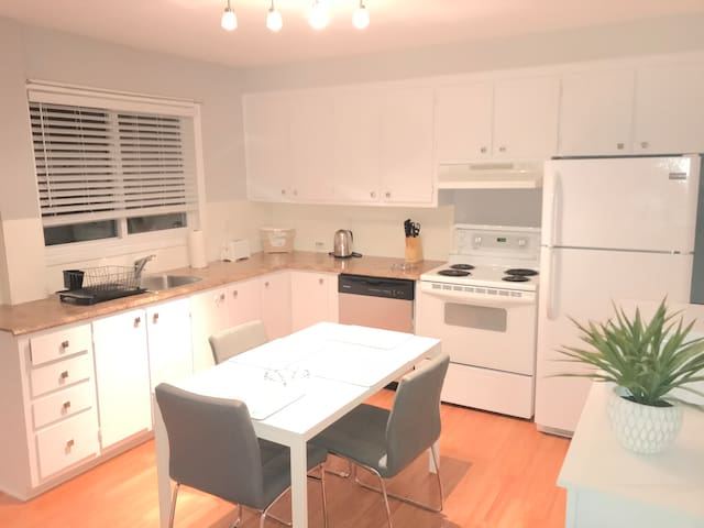1 bedroom large appartment