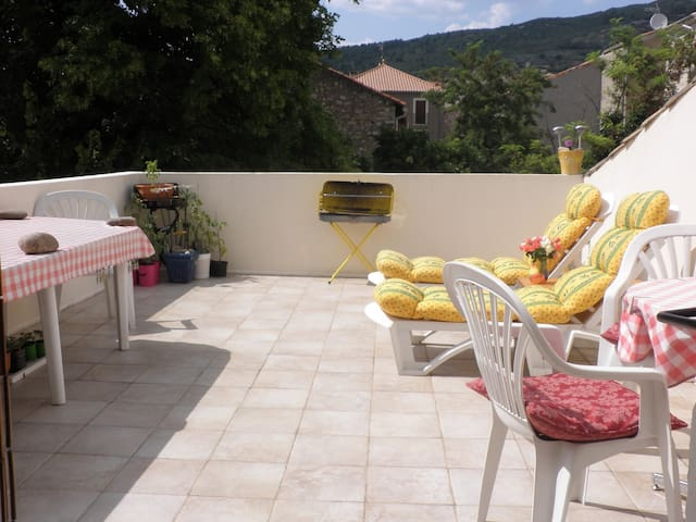 Sunny roof terrace house in rural village - Causses-et-Veyran - House