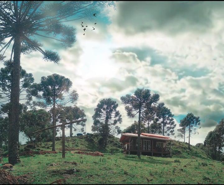 Cabana Sombras das Araucárias