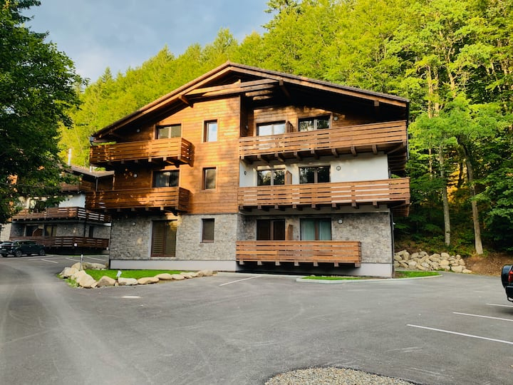 Lucnica  apartments - mountain style 4BD apts.