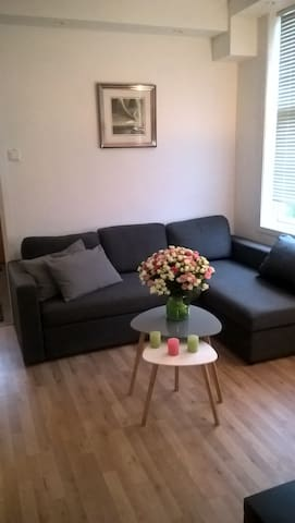 Spacious 2 bedroom apartment near city center - Stavanger - Daire