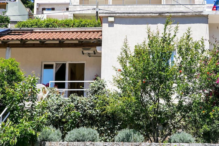 Apartments Elelu - 1 BD with Terrace &Sea View